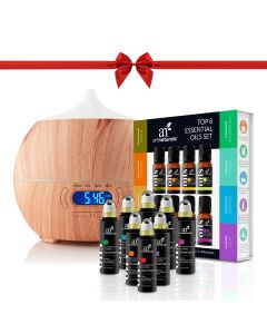 Essential Oil Bluetooth Speaker Diffuser Holiday Gift Set