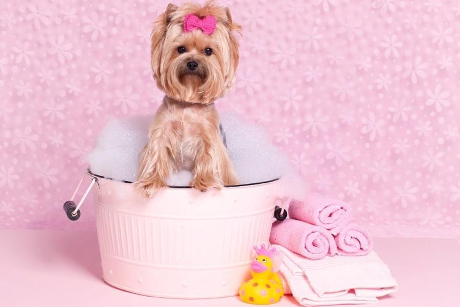 7 Ways to Make Your Bath Feel Like a Spa