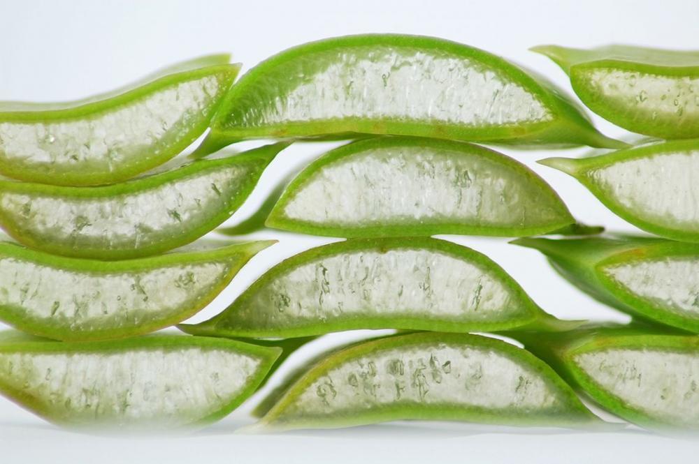 13 Ways to Use Aloe Vera Gel at Home
