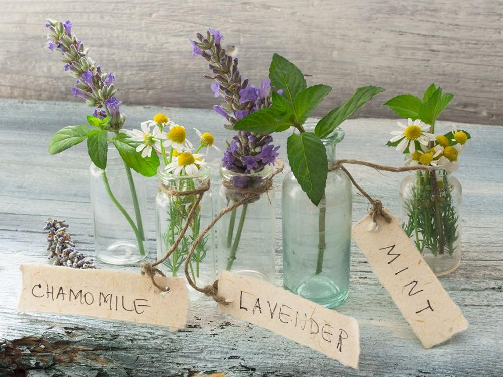 10 Aromatherapy Safety Rules You Should Always Follow