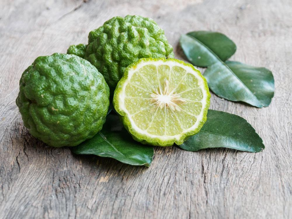 Bergamot Oil History, Uses and Benefits