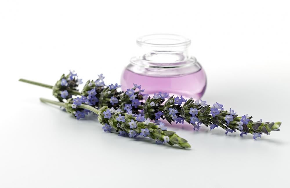 10 Things Everyone Should Know About Essential Oils