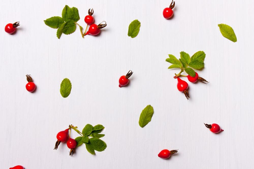 Rosehip Oil for Health and Beauty