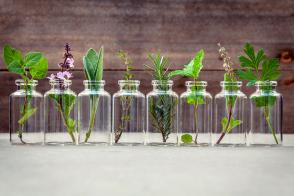 Essential Oils to Transition into Winter