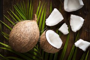 Fractionated Coconut Oil Uses | Carrier Oils | Oil Diffuser