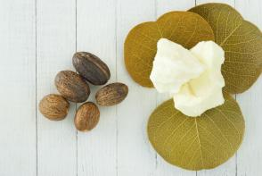 New Shea Butter Line to the Rescue for Damaged Hair!