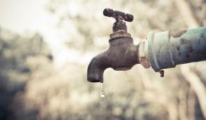 6 Ways You Can Save Water Now