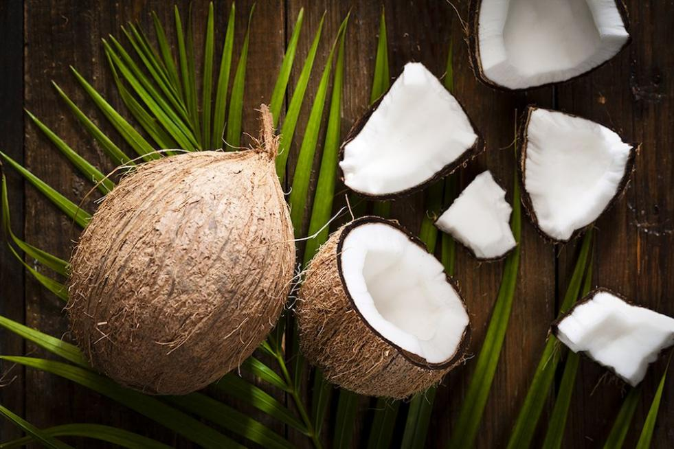 Fractionated Coconut Oil Uses   Carrier Oils   Oil Diffuser