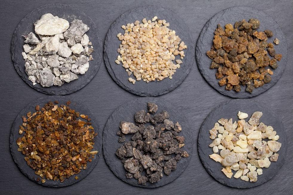 Guide to Frankincense Essential Oil