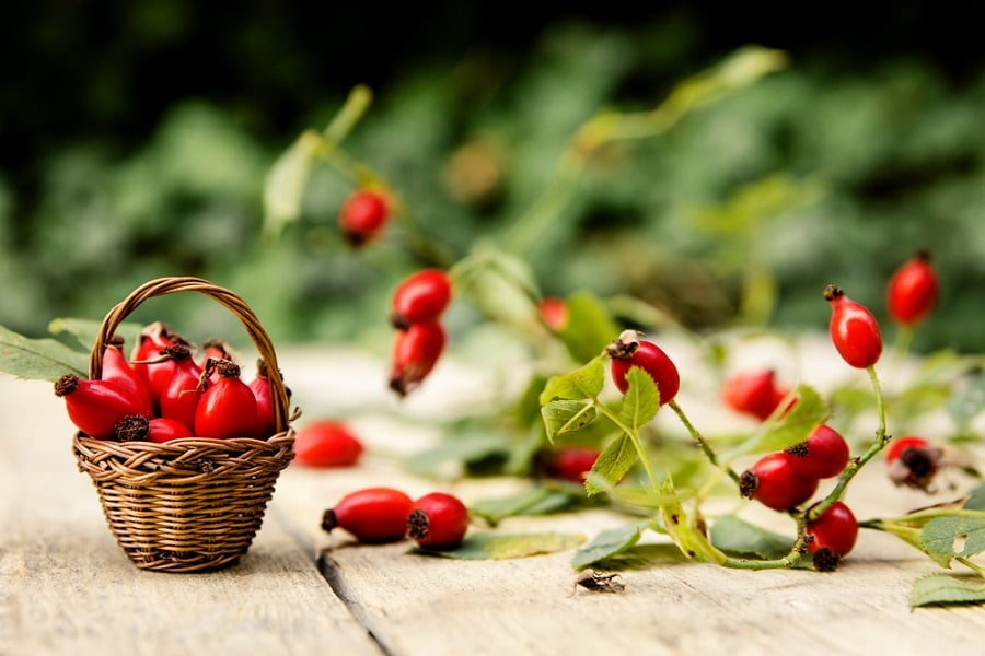 Ready to feel amazing about your skin's appearance? Try rosehip oil.