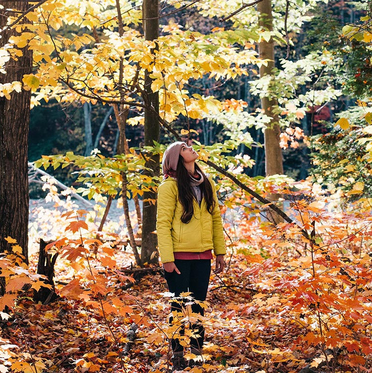 girl hiking in woods while looking up at fall trees