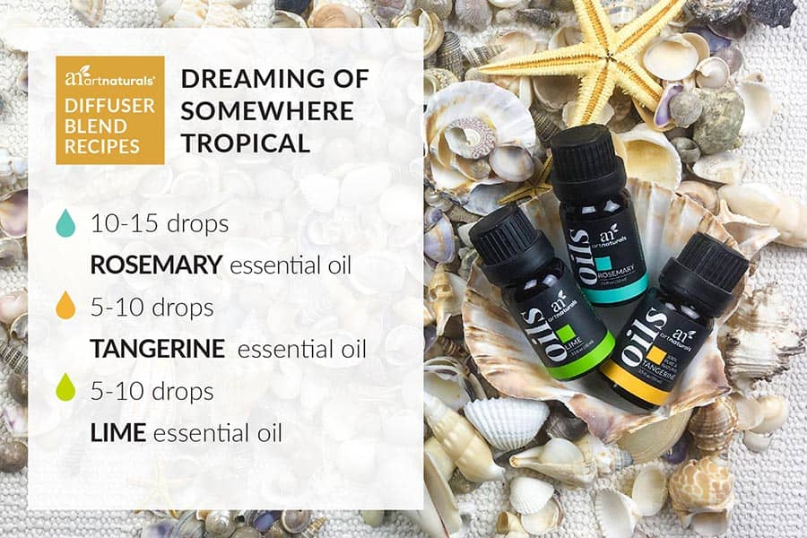 best-essential-oil-diffuser-blend-recipe-to-make-you-forget-winter-infographic
